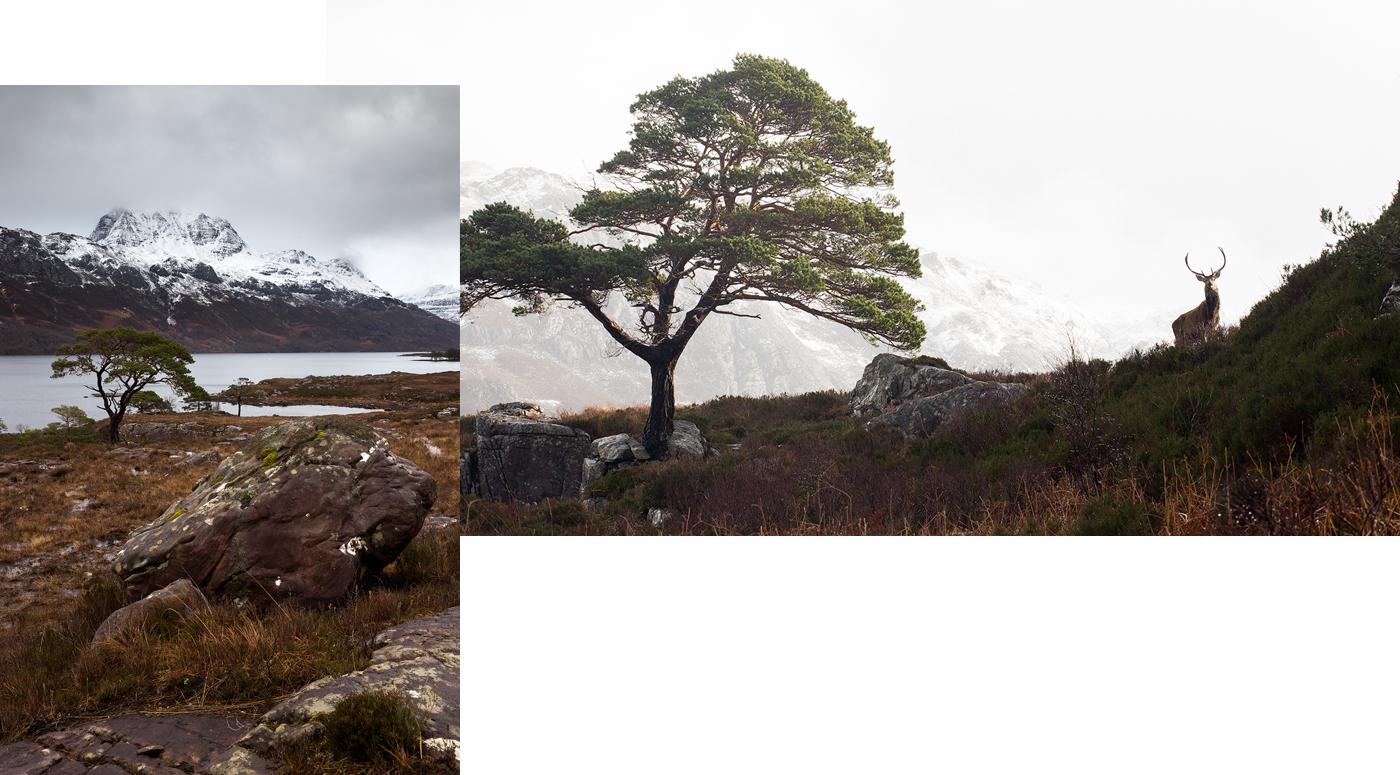 nicolas-rottiers-photographe-paysage-ecosse-2