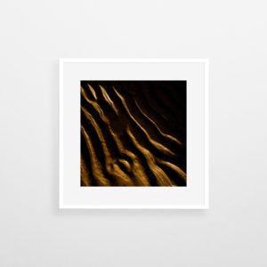 tirages-art-deco-nature-veins-nicolas-rottiers-photographe-normandie